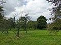 Bornem Brandheide 38 Hoogstamboomgaard (2) - 230218 - onroerenderfgoed.jpg