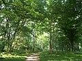 Botanical garden (Zugdidi9).jpg