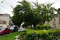 Boulevard carteret 1006786.jpg