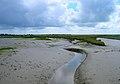 Bremere Rife - geograph.org.uk - 501466.jpg