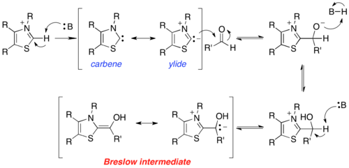 Scheme 2. Formation of the Breslow intermediate