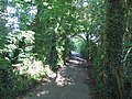 Bridleway to Pen Hill - geograph.org.uk - 488238.jpg