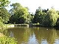 Brueton Park lake - geograph.org.uk - 559523.jpg