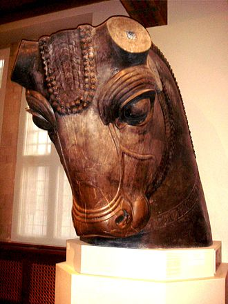 University of Chicago Oriental Institute - Head of a bull that once guarded the entrance to the Hundred-Column Hall in Persepolis