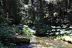 The Bull Run River near its headwaters in the Cascade Range