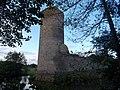 Burg Baldenau bei Morbach 2.jpg