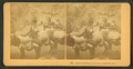 Burro pack train, on the way to Leadville, Col, by Kilburn Brothers.png