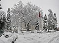 Bursa Yeşil 2015 kar manzarası - panoramio (1).jpg