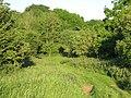 Bushy Grove - geograph.org.uk - 1337841.jpg