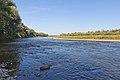 Bystrytsia River near Yezupil-6122.jpg