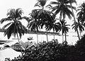 COLLECTIE TROPENMUSEUM Gezicht over Pagimana langs de Golf van Poh TMnr 60018676.jpg