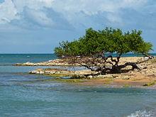 Pen nsula de paraguan wikipedia la enciclopedia libre - Cabo san roman ...