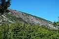 Cadillac Mountain Granite (Silurian-Devonian boundary times, ~419 Ma; Precipice, Champlain Mountain, Mt. Desert Island, Maine, USA) 2.jpg
