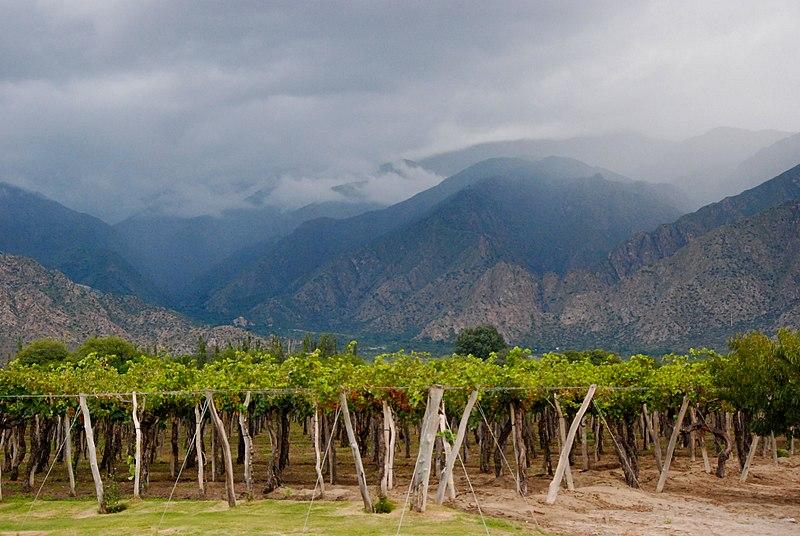 9 Destinasi Wisata Wine Terbaik Di Tahun 2017, Ada yang Udah Pernah Mampir ?