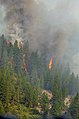 California National Guard help battle the Rim Fire near Yosemite 130829-A-YY327-170.jpg
