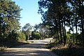 Calle Abayuba esquina Ruta 10 - panoramio.jpg