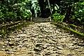 Caminho de pedras que leva a escada.jpg