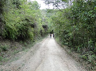 Serra da Canastra National Park - Image: Caminho para a Cachoeira Casca d´Anta (parte baixa)