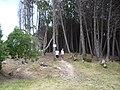 Camping de Arenas Verdes - panoramio.jpg