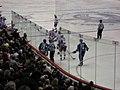 Canucks Rangers IMG 0355 (2351119948).jpg