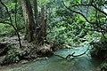 Cascada en El Chuveje, Querétaro.jpg