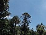 Caserta, Parco Reale (09).jpg