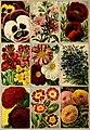 Catalogue 1891 - W. R. Strong Company California seeds, trees and nursery stock (1891) (20576831645).jpg
