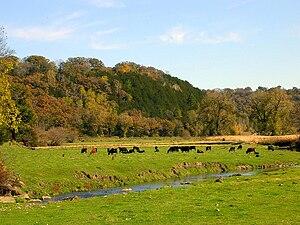 Fillmore County, Minnesota - County landscape in autumn.