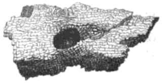 Cavall - Sketch of a footprint stone from Carn Cavall, Lady Guest's Mabinogion (1849)