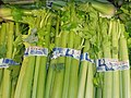Celery bunches stacked.jpg