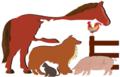 Center for Veterinary Medicine logo.png