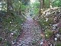 Chalamont - voie antique 1.JPG