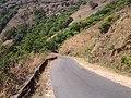 Charmadi Ghat - panoramio (2).jpg
