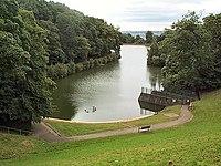 Chellow Dene lower reservoir - geograph.org.uk - 37348.jpg