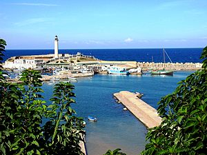 Cherchell - The port of Cherchell