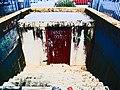 Civil Offence Bunker - Bondi, 2010.jpg
