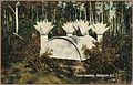 Color post card. Indian cemetery, Hazelton, British Columbia. - NARA - 297781.jpg