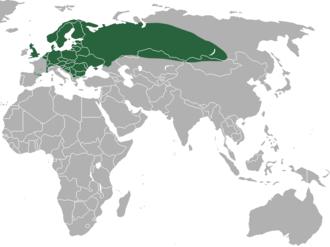 Common shrew - Image: Common Shrew area