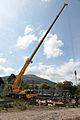 Crane (4703534287).jpg