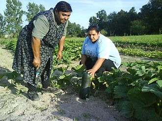 EEA and Norway Grants - The organic farm Malinka in Rudlov (Slovakia) has been renovated and expanded, creating new jobs and helping to secure already existing ones. In Slovakia, unemployment rate among the Roma population is around 80 percent.