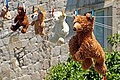Croatia-01842 - Hanging Bears (10091041353).jpg