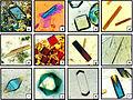 Crystals grown in microgravity.jpg