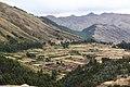 Cusco - Peru (20750984342).jpg