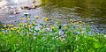 Cuyahoga Valley National Park (97bc0872-16a6-4c82-8a30-77c283d32db9).jpg