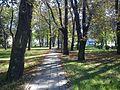 Czeladź-Park.2.JPG