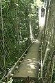 DSC01280 Rope bridge in Samoa.jpg
