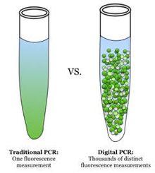 Digital polymerase chain reaction - Wikipedia