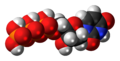 Deoxyuridine triphosphate 3D spacefill.png