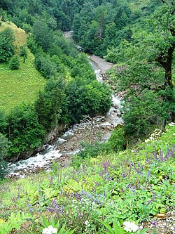 Dereli Stream Giresun Turkey.jpg