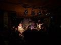 Die Band Chefdenker live im Juz Mannheim.jpg